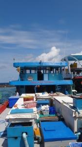 Maldivian fishing boat - Fresh From The Sea! Cute!