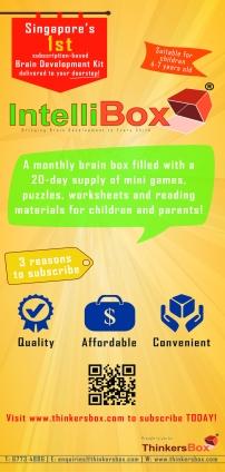 IntelliBox Flyer