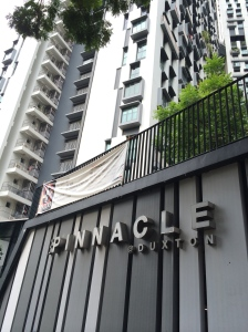 pinnacle duxton HDB