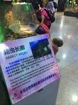 Shanghai, China english, natural insect museum