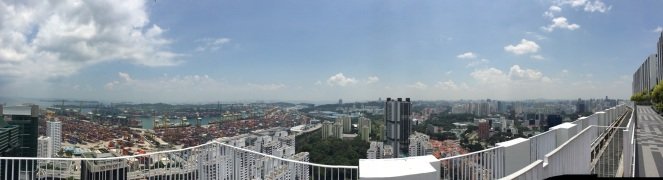 pinnacle duxton skybridge HDB