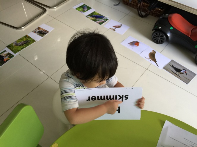 """We are """"playing"""" with the flash cards at home."""