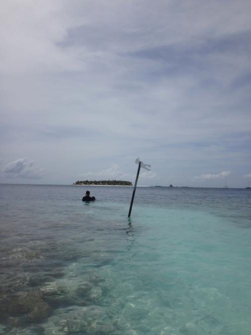 Snorkeling this way!
