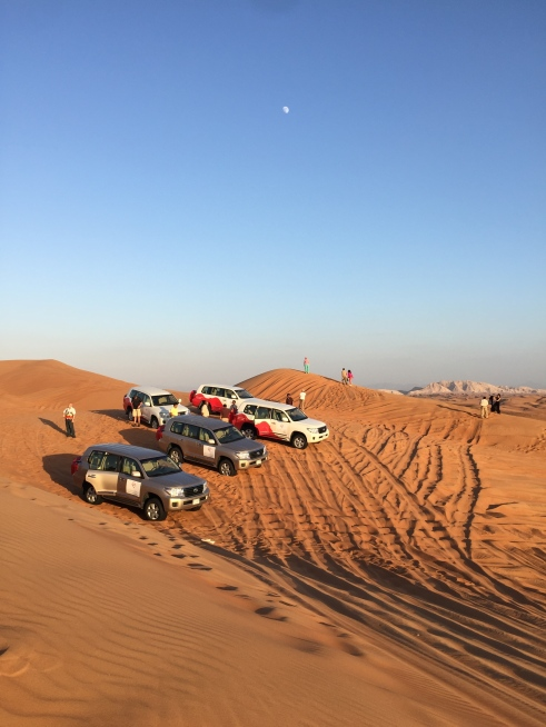 gulf ventures desert safari