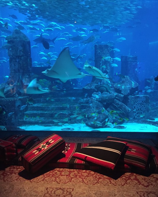 Dubai Atlantis The Palm