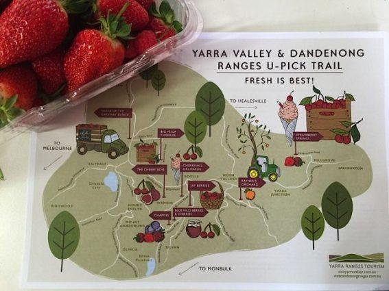 Yarra Valley u-pick