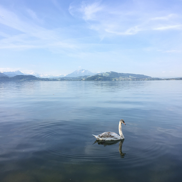 Zug Switerland lake