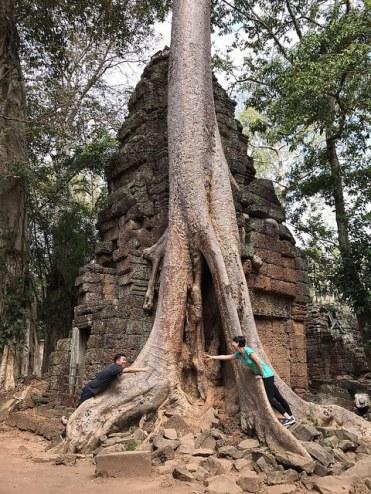 Ta Prom Siem Reap Angkor Wat Cambodia