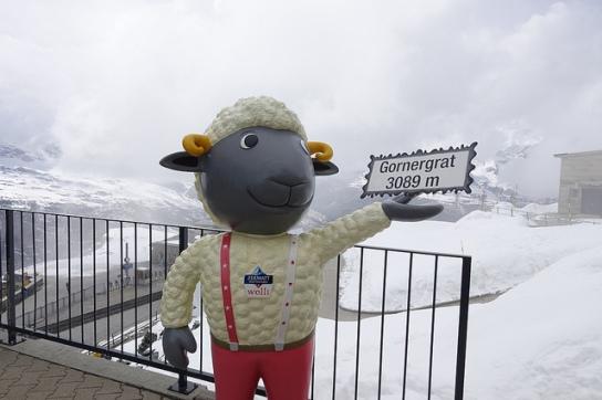 Matterhorn Gornegrat Bahn